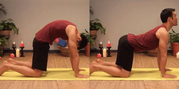 yoga cow pose